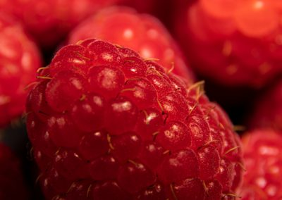 macro photography of raspberries
