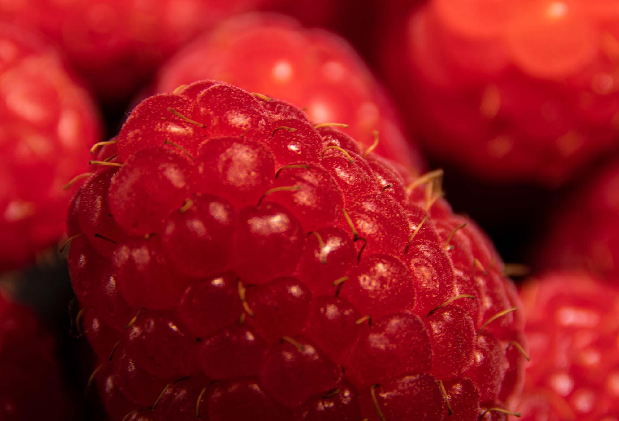 macro photography of raspberries on black background